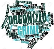 Técnico Avanzado en Crimen Organizado Internacional