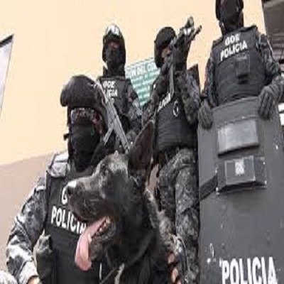 Curso Avanzado en Binomios K9 en la Seguridad